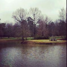 winter - Starkville, Mississippi