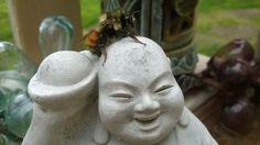 Buddha Bee