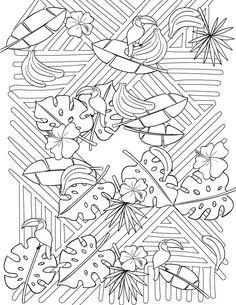 artherapie jeux coloriage tropical imprimer pour adulte