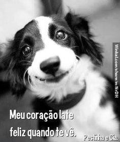 ❤️❤️ #filhode4patas #filhote #maedepet #paidepet #petshop #cachorro
