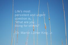 Made by Sarah Robinson #MLK #quotes #inspire