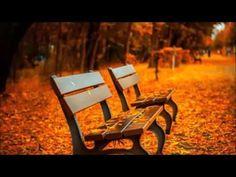 Vivaldi's Autumn   The Yellow Brick Road