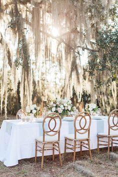 Willow Tree Wedding Ceremony Backdrops Ideas For 2019 Romantic Wedding Receptions, Wedding Reception Decorations, Romantic Weddings, Reception Ideas, Wedding Venues, Wedding Bells, Wedding Ceremony, Wedding Flowers, Wedding Tips