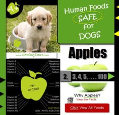Human Foods Safe for Dogs | Green Apples for Dogs