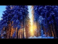 Abraham Hicks 2016 - Letting yourself receive (new) - YouTube