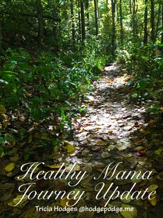 With Trim Healthy Mama Cookbook giveaway! A healthy mama journey update - from Trim Healthy Mama and gluten free living to essential oils and more.