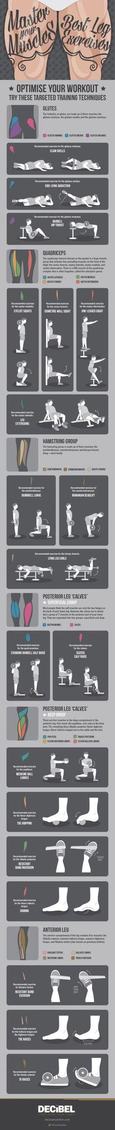 Best Leg Exercises Infographic