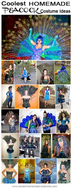 Coolest Peacock Halloween Costumes - Homemade Costume Contest