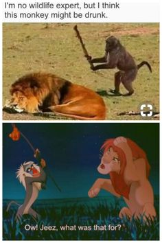 22 Best Rafiki Quotes Images On Pinterest Proverbs