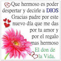 Mejores 111 Imagenes De Oracion De Gracias En Pinterest Biblical