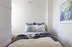 6 Liverpool Street, Paddington NSW 2021, Image 12 - 2.9x2.0 bedroom