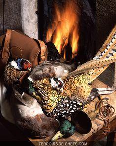 Conseils chefs gibier faisan perdreau lièvre royale grouse
