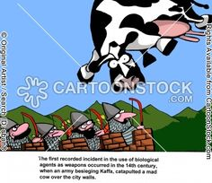 The first recorded incident in the use of biological agents as weapons occurred in the 14th century, when an army besieging Kaffa, catapulted a mad cow over the city walls.