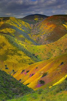 Carrizo Plain National Monument - Valley Of Color, California; photo by kevin mcneal, via Flickr