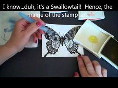 Stampin' Up! Aqua Painter Technique with the Swallowtail! - YouTube
