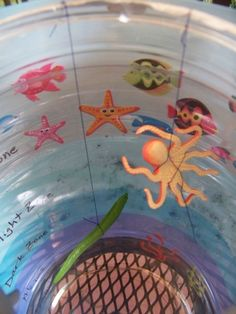 Learn the Zones of the Ocean with this ocean biome science & craft idea Science Projects For Kids, Science Crafts, Science For Kids, School Projects, Ocean Activities, Preschool Activities, Layers Of The Ocean, Ocean Lesson Plans, Ocean Zones