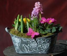 Aranjament vas tabla Flori mix primavara in ghivece (se pastreaza o perioada indelungata) 60 lei + TVA, CorporateBaskets. Plants, Diy, Bricolage, Plant, Handyman Projects, Do It Yourself, Diys, Diy Hacks, Planting