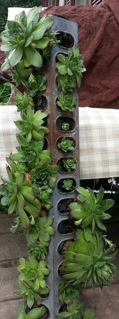 More Garden Containers You Never Thought Of… Old chicken feeder turned into planter. Lots more Ideas & Tutorials!