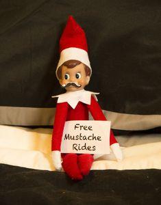Elf on a shelf IS cool. - Buddy The Elf Christmas Photos, Christmas Humor, Christmas Holidays, Christmas Pranks, Merry Christmas, Beach Christmas, Christmas 2017, Happy Holidays, Elf On The Shelf