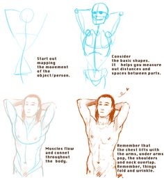 "batwynn: ""lustpotato: ""batwynn: ""Someone asked for a tutorial thing a while back, so I threw this together. ANATOMY WITH THE AVENGERS! Oh, and Tom. "" bless this post. i just got into illustrating and let me tell you, this is the least stressful, most..."