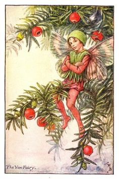 §§§ : The Yew Fairy : Cicely Mary Barker : 1895-1973 : http://www.encore-editions.com/categories/cicely-mary-barker-flower-fairies-of-the-winter