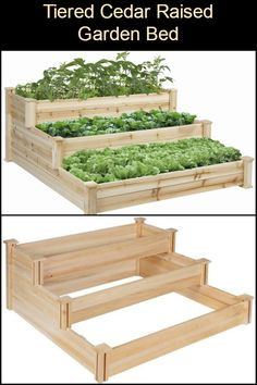 Enjoy Gardening Without The Breaking Your Back With This Tiered Cedar Raised Garden Bed