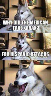 14 Best Jokes From Pun Husky - Jokes - Funny memes - - Why Did Mozart Killed His Chicken? The post 14 Best Jokes From Pun Husky appeared first on Gag Dad. Pun Husky, Husky Jokes, Dog Jokes, Puns Jokes, Corny Jokes, Animal Jokes, Funny Animal Memes, Funny Animal Pictures, Memes Humor