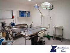 https://flic.kr/p/SJUur7   En CLÍNICA VETERINARIA DEL BOSQUE estamos más que equipados para realizar cirugías 1   CLÍNICA VETERINARIA DEL BOSQUE. En Clínica Veterinaria del Bosque contamos con un quirófano completamente equipado con anestesia inhalada y monitores transquirúrgicos, en donde al anestesista se le permite visualizar permanentemente las constantes de las mascotas como son el electrocardiograma, frecuencia respiratoria, cantidad de oxigeno circulante en el organismo durante…