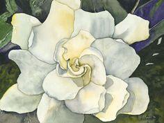 gardenias drawing - Google Search