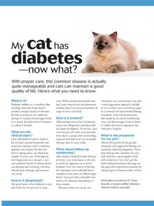 Diabetes is a disease where a person's body is unable to properly store and use glucose. Glucose is a form of sugar and if someone has diabetes their glucose levels will often rise too high. There are basically two different types of diabetes including. Cat Care Tips, Pet Care, Pet Tips, Vet Assistant, Vet Med, Vet Clinics, Diabetic Dog, Veterinary Medicine, Animales
