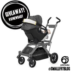 orbit + small fry giveaway