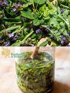 PLEŤOVÝ OLEJ S POPENCEM (Kuchařka ze Svatojánu) Herbs, Homemade, Health, Plants, Food, Gardening, Fitness, Health Care, Eten