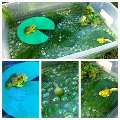 Fishing swimmers and green leaves. And laminated count to 5 cards. Play Create Explore: Pond/Lifecycle of a Frog Sensory Bin/Small World Play