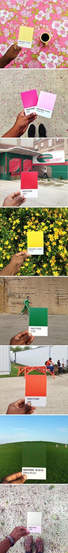 """摄影师Paul Octavious 在Instagram上进行了一项名为""""Pantone计划""""的活动,用Pantone色卡去对应现实生活中的色彩。"""