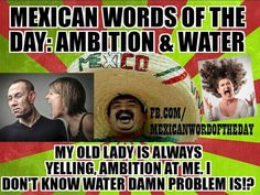 Mexican word of the day Mexican Word Of Day, Mexican Words, Mexican Quotes, Mexican Memes, Word Of The Day, Funny Jokes For Adults, Spanish Words, Everything Funny, Laugh At Yourself