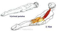 Jediný cvik pro královské držení t? Yoga Fitness, Health Fitness, Yoga Philosophy, Massage Benefits, Physical Pain, Back Pain Relief, Yoga Quotes, Massage Therapy, Excercise