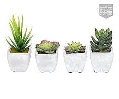 4 Pots FLUFF, céramique - blanc et vert
