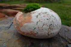 Stone & Moss