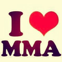 Online MMA School and Mixed Martial Arts Certification.