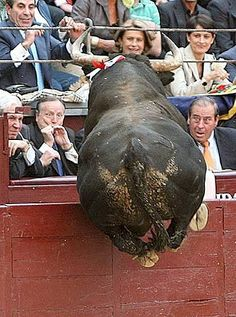 Decía el alcalde  Alvarez del Manzano que desde la barrera se ven mejor los toros