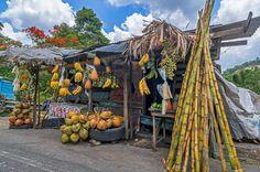 Jamaica Quotes, Jamaica Pictures, Jamaica Country, Vacation Captions, Jamaica Vacation, Jamaica Jamaica, Fruit Stands, Winter House, Vacation Destinations