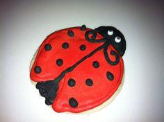 Lady bug sugar cookie