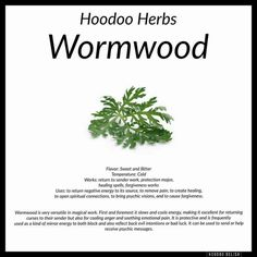 Wormwood Hoodoo - Pinned by The Mystic's Emporium on Etsy