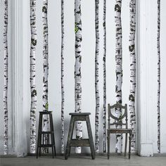 Become one with nature and embrace your inner outdoors man without ever watering your plants! These true-to-life birch tree wall decals will promote peace and tranquility in your home, not to mention