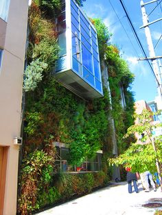 Green Roof Tour by sfplanning, via Flickr photo by kcheng