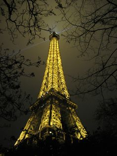 Night view of the eiffel tower...