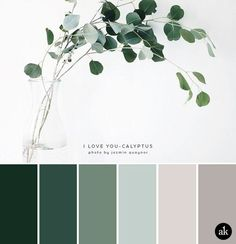 a eucalyptus-inspired color palette a eucalyptus-inspired color palette // green gray natural tones The post a eucalyptus-inspired color palette appeared first on Wandgestaltung ideen. Nature Color Palette, Green Colour Palette, Green Colors, Colours, Silver Color Palette, Color Tones, Blue Palette, Red Colour, Color Art
