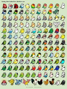 Luv that one deadpool dude – Cockatiel Cute Animal Drawings Kawaii, Cute Easy Drawings, Kawaii Art, Bird Drawings, Cartoon Drawings, Cute Doodles, Cute Birds, Cute Cartoon Wallpapers, Doodle Art