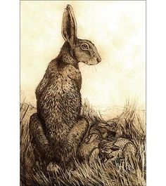 Large Hare & Leverets by Anna Ravenscroft
