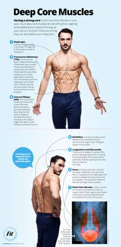 Get to Know Your Deep Core Muscles|Epoch Times #Fitness #newspaper #editorialdesign #Infographic
